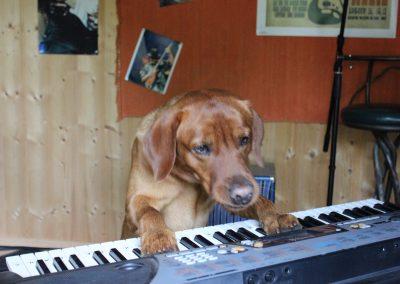 Luigi Keyboard